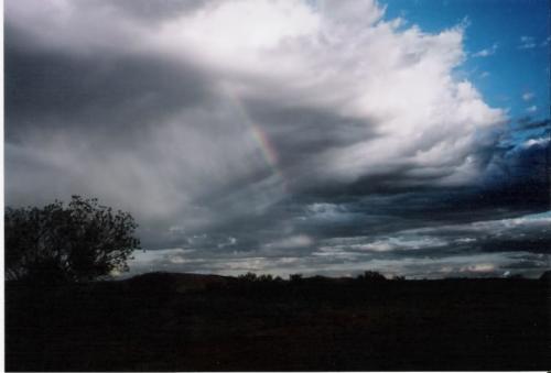 Regenboog